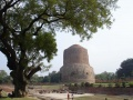 Sarnath, Stupa marks the place of Budhas first teaching