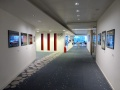 Clifford Chance LLP Gallery view1 Photo-Nigel Frank