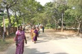 Bindu artists walking to the Bharat Gramodaya Darshan Park at Vivekanandapuram